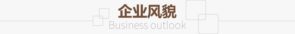 企(qi)業風貌(mao)